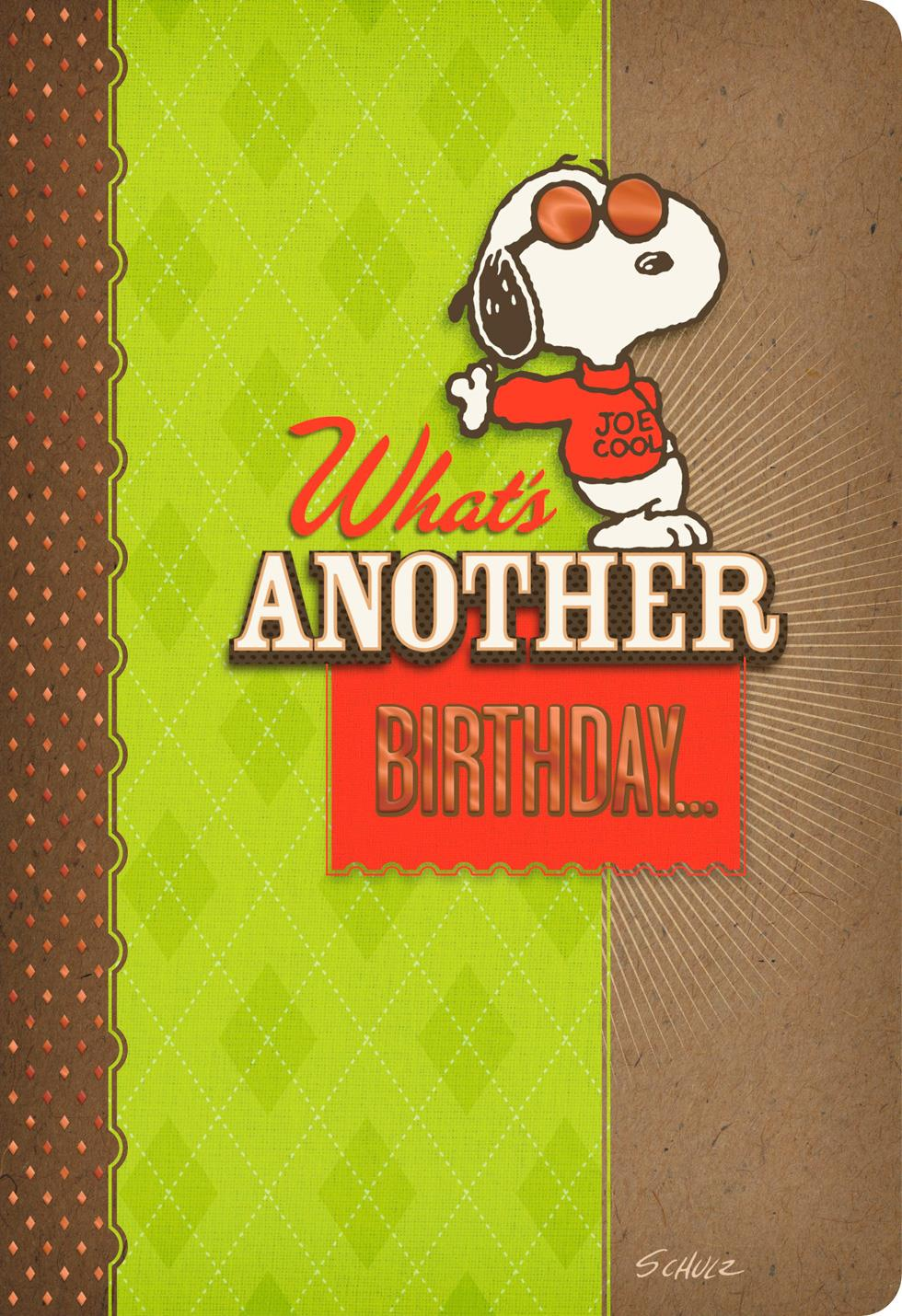 Peanuts Snoopy Handsome Dog Birthday Card Greeting