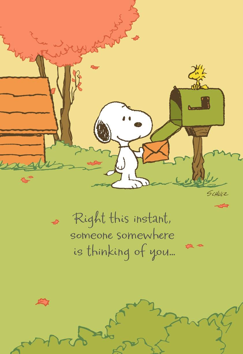 Peanuts Snoopy Missing You Thanksgiving Card Greeting