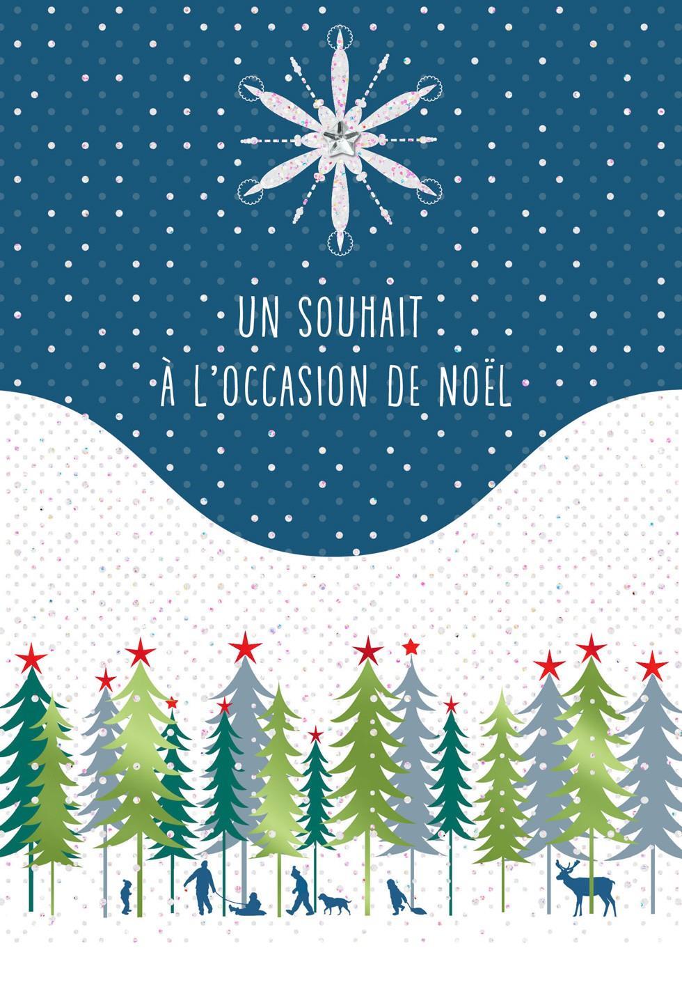 Joyeux Noel French Language Christmas Card Greeting