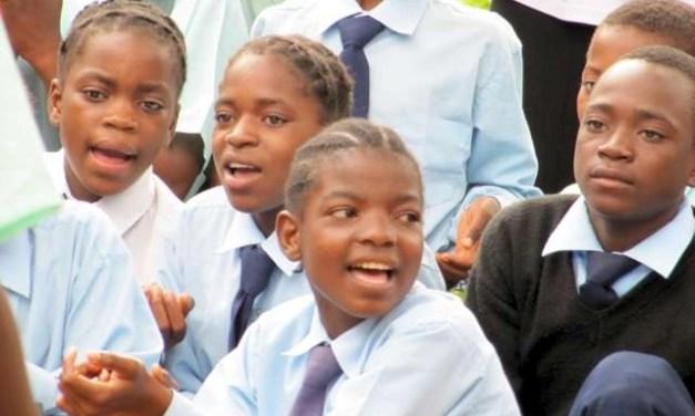 Update on Limapela School in Zambia