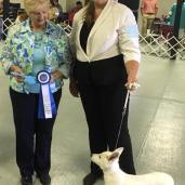 Mason-Dixon Reserve Best in Show Puppy TWICE