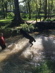 Avah's favorite place-Rhea Springs