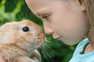 A young girl is holding a rabbit in her hands.