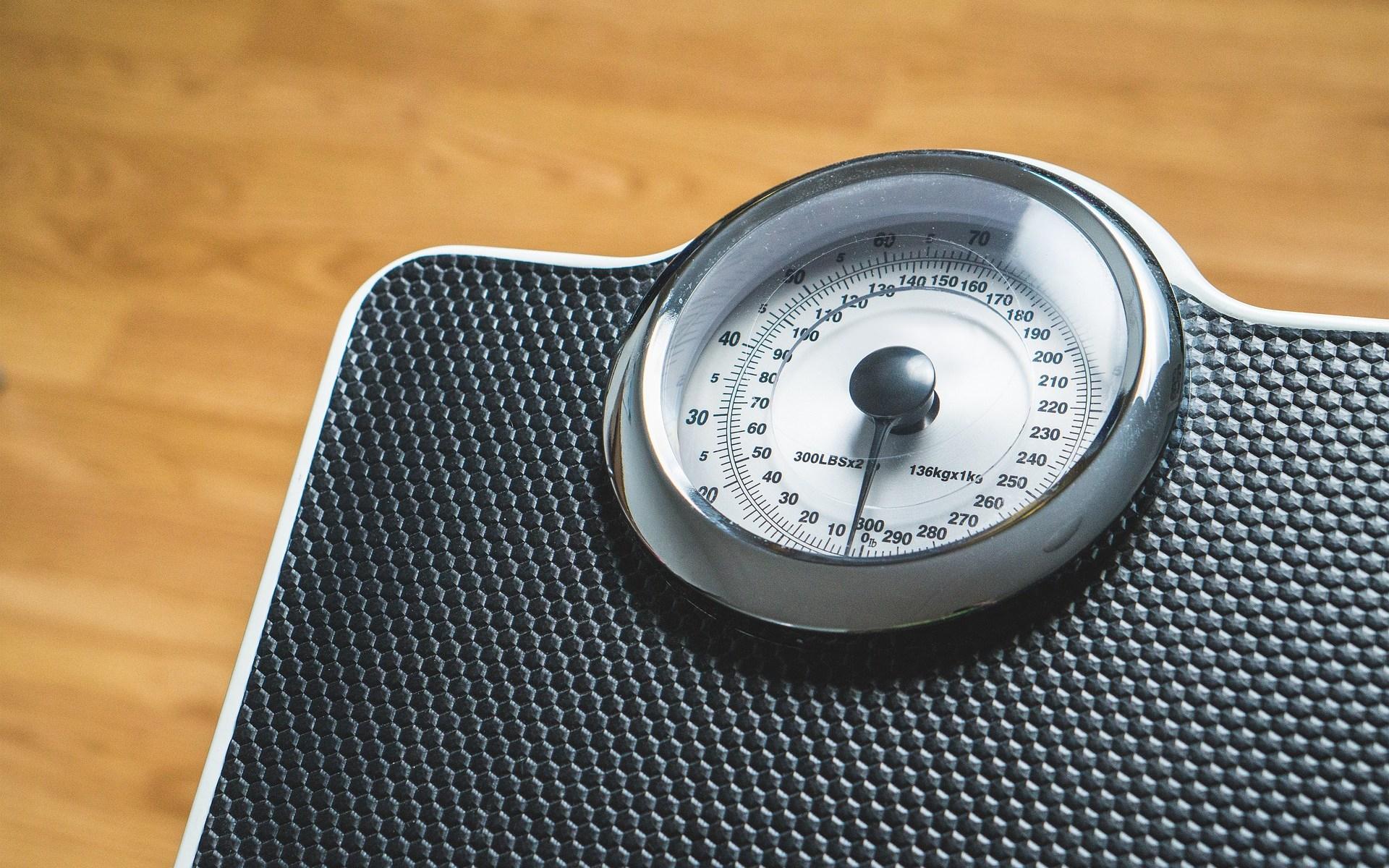 Obesity-induced Immune Dysfunction – HALLWANG CLINIC UPDATES