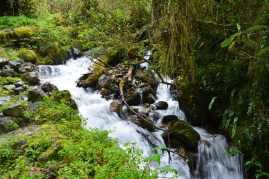 Mycket fin natur och otroligt rent vatten som kommer från glaciären på toppen av berget.