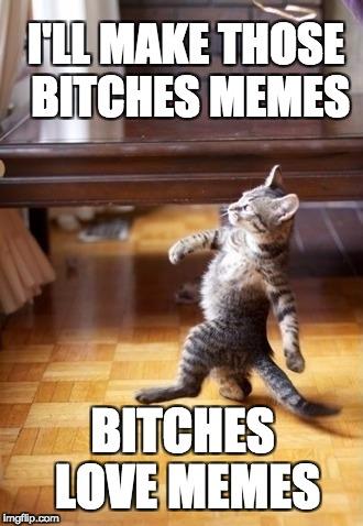 Funny-Friday-Cat