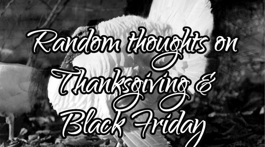 Random Thoughts on Thanksgiving and Black Friday