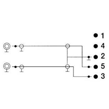 00043336 hama audio adapter 2 rca female jacks  5pin din
