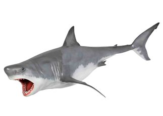 Great White Hanging Shark statue