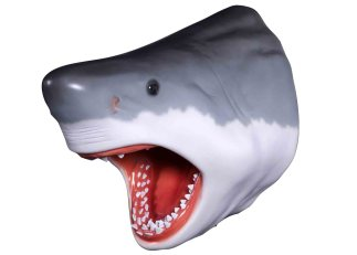 Great White Sharks Head statue