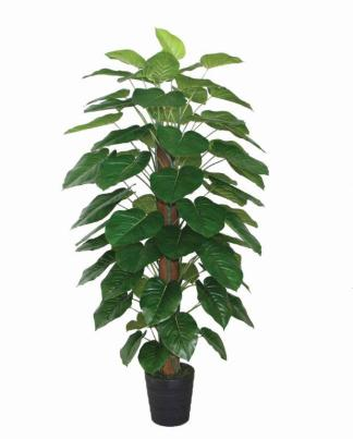 180Cm Pothos Pole With Pot