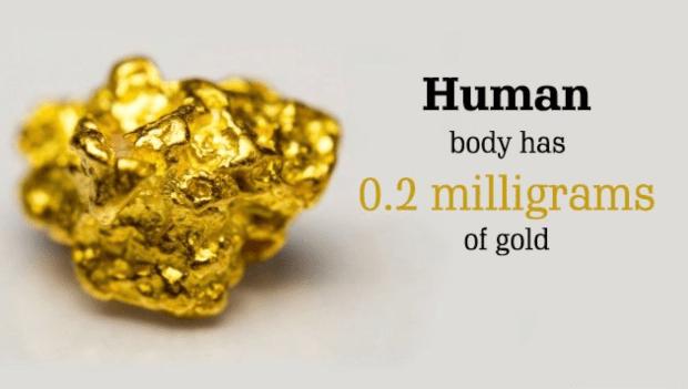 کیا آپ جانتے ہیں جسم کے کس حصے میں کتنا سونا موجود ہے؟ انسانی جسم کے بارے میں ہوش اڑا دینے والی معلومات 1