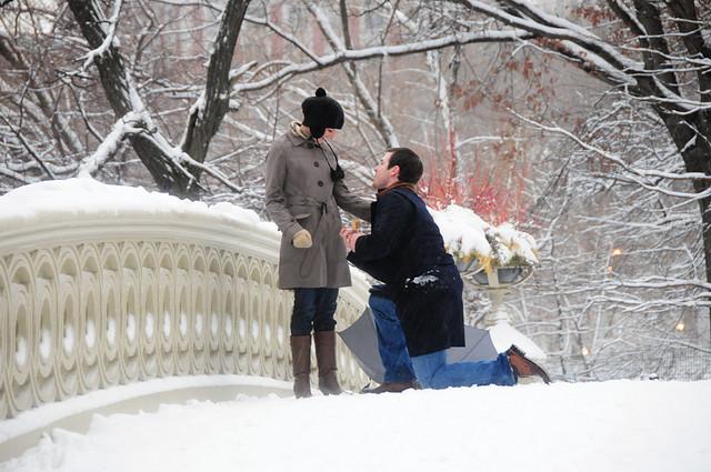 https://i2.wp.com/www.hamiltonjewelers.com/blog/wp-content/uploads/2012/02/proposal-at-central-park.jpg