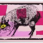 Vanishing Animals -- Giant Chaco Peccary, 1986
