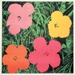 Flowers, [II.6], 1964