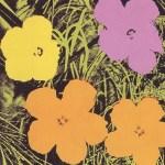 Flowers, [II.67], 1970