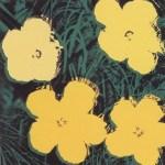 Flowers, [II.72], 1970