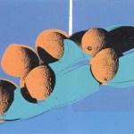 Space Fruit - Cantaloupes I [II.201], 1979