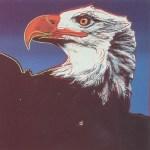 Bald Eagle, [II.296], 1983