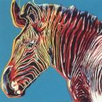 Grevy's Zebra, [II.300], 1983