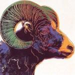 Bighorn Ram, [II.302], 1983