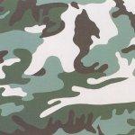 Camouflage, [II.406], 1987