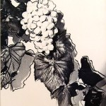 Grapes, [IIA.190], 1979