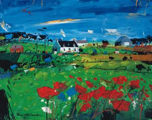 Poppy Field, Skye