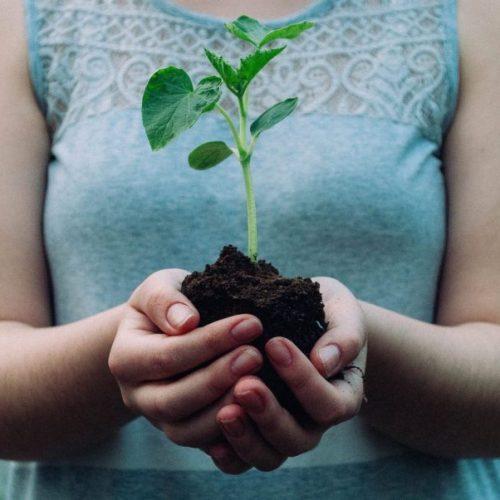 6 consejos fáciles para cuidar del planeta