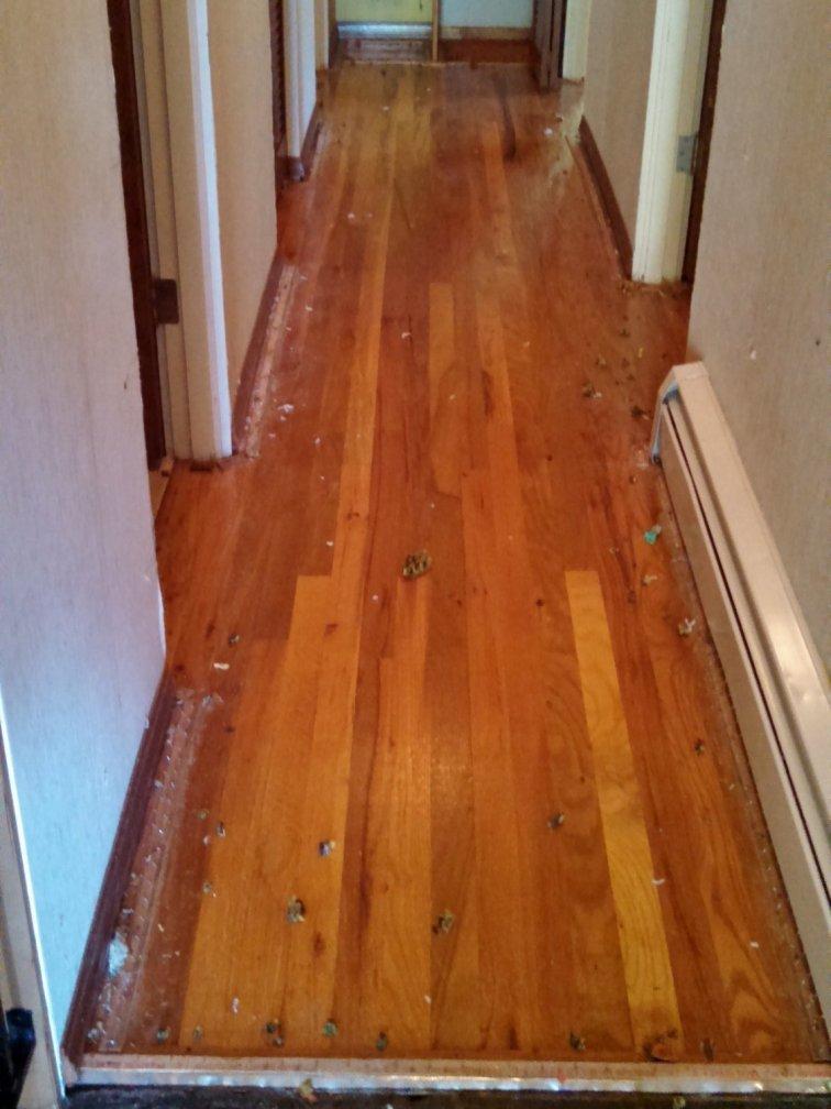 Hardwood floor after removing carpet