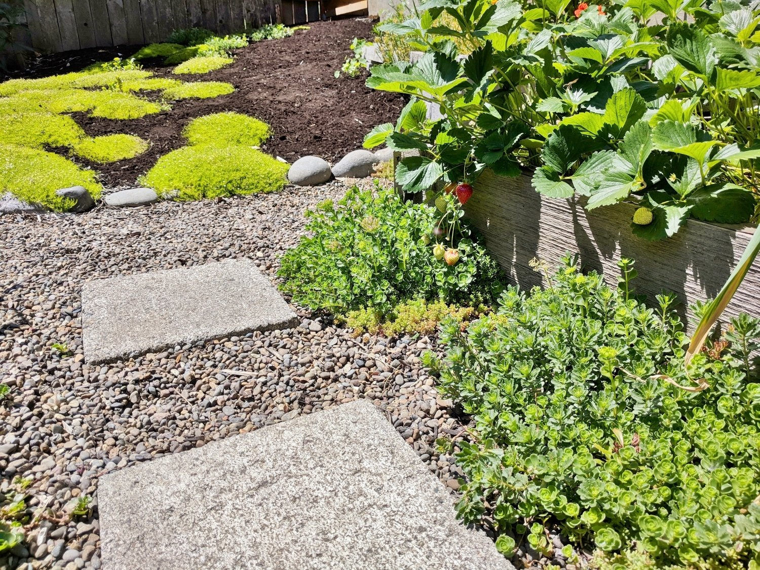 5 Pretty Landscaping Ideas For Your Raised Beds