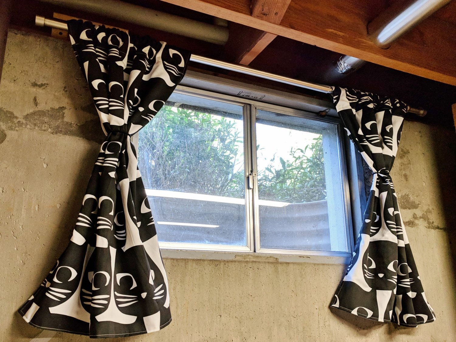 Cat curtains hanging in basement window