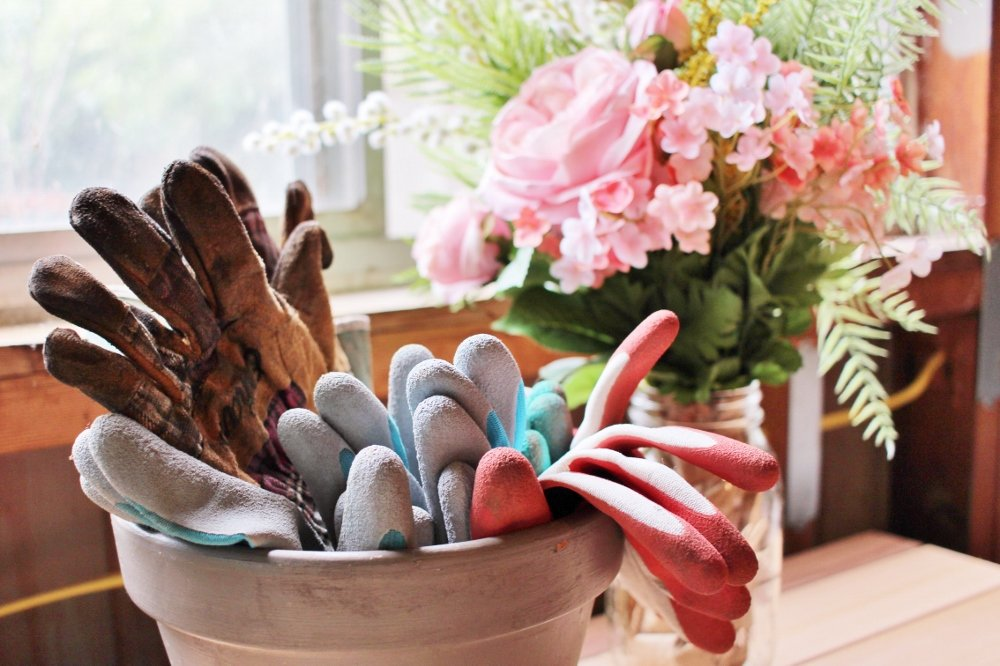 5 Gardening Supplies You Need (And 1 You Don't)
