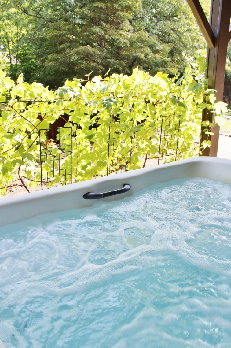 Grow a wall of grape vines to create hot tub privacy