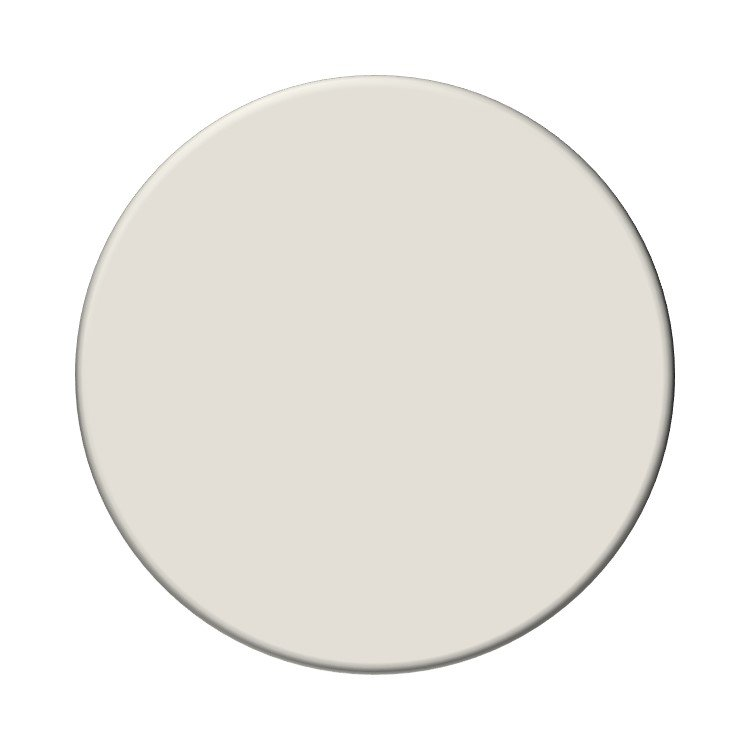 Sherwin Williams Icy Avalanche neutral paint
