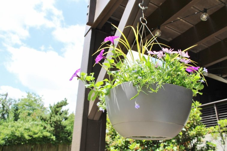 Hanging basket for a mid-century modern house