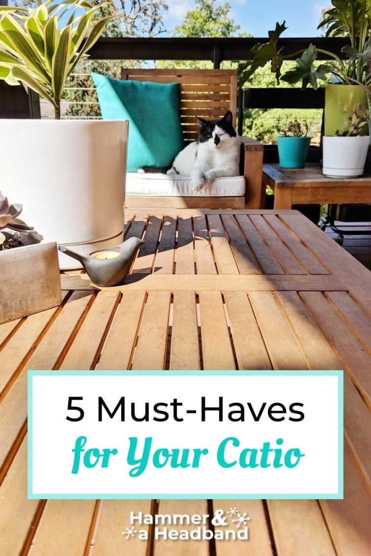 5 must-haves for your catio