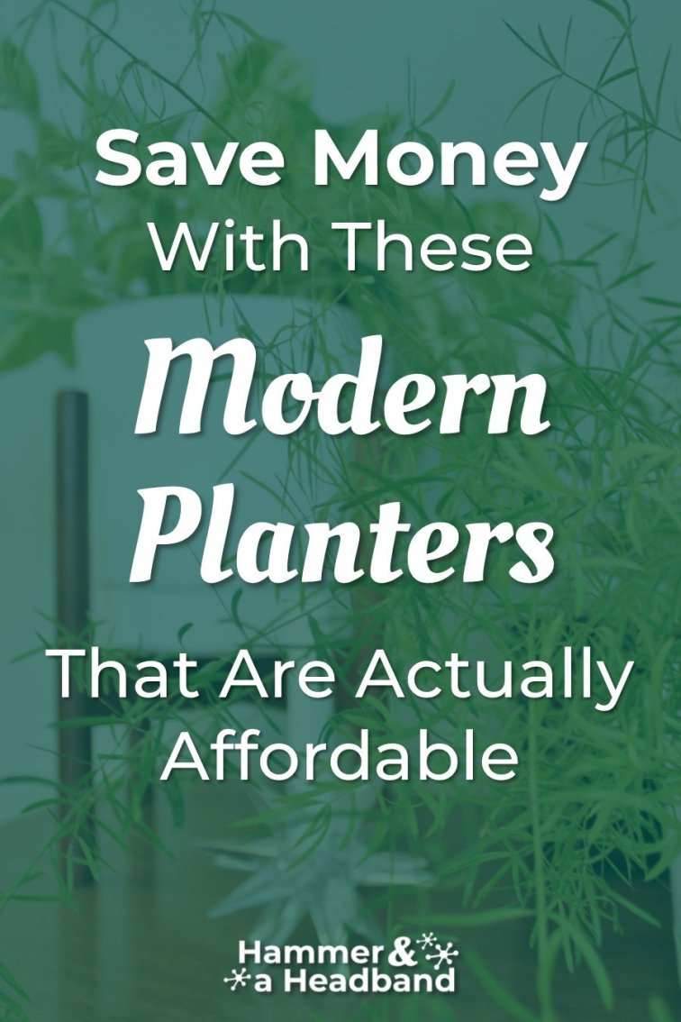 Save money with these modern planters that are actually affordable