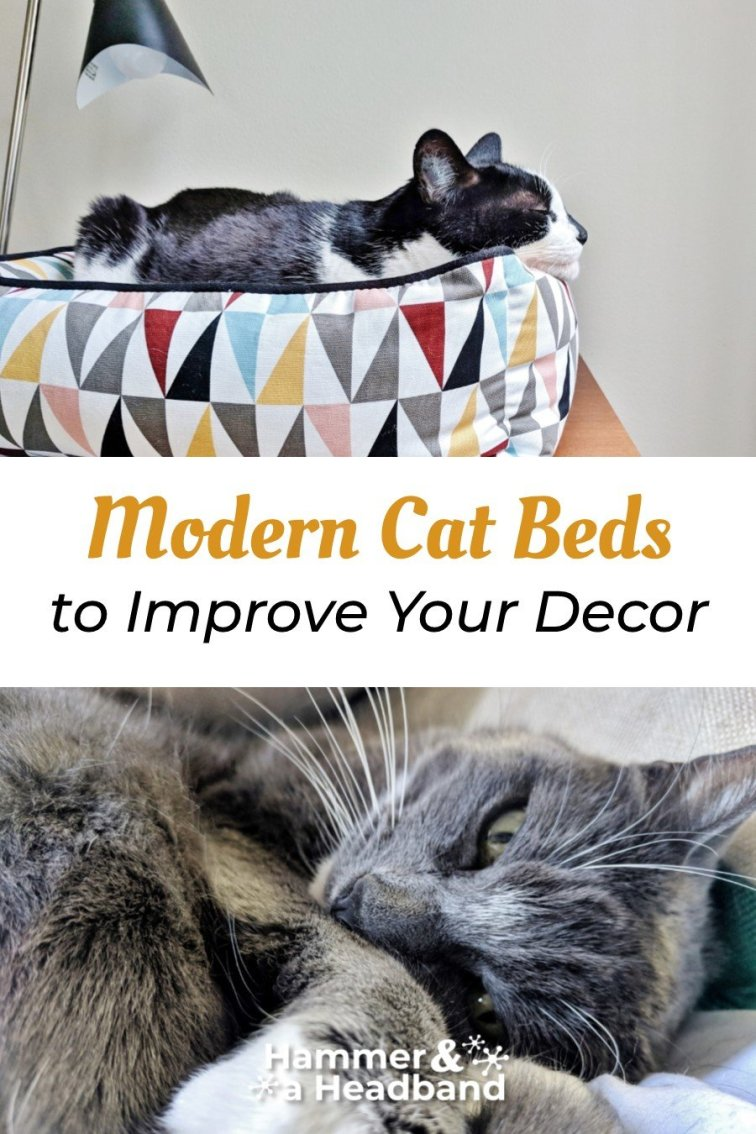 Modern cat beds to improve your decor