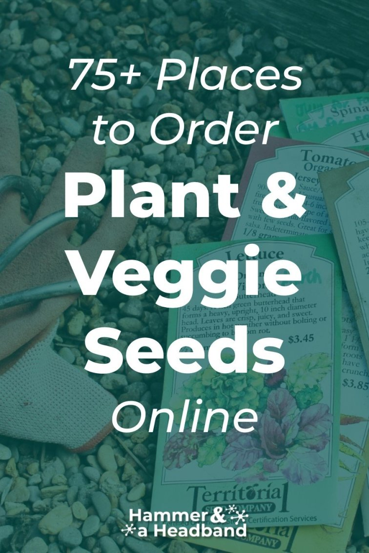 Where to order plant and veggie seeds online