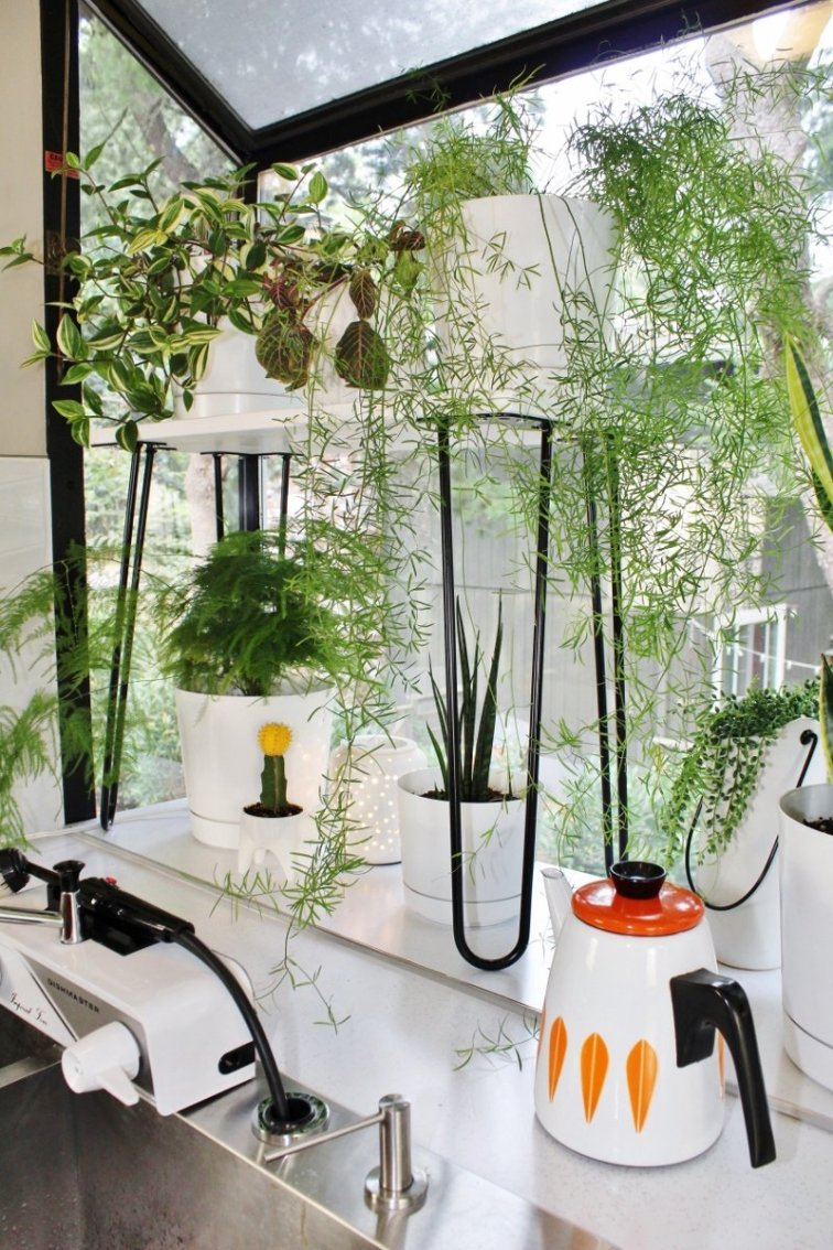Mid-century modern plant stand with white shelf and black hairpin legs
