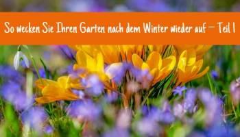 So Wecken Sie Ihren Garten Nach Dem Winter Wieder Auf Teil 1