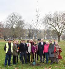 16th Dec 2016 Planting Tree in Wormholt Park to commemorate the 90th Birthday of the HM Queen Elizabeth Second With The mayor and Cllr Harcourt The tree is a Liriodendron Tulipifera