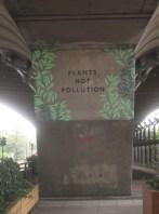 Plants-not-pollution under flyover