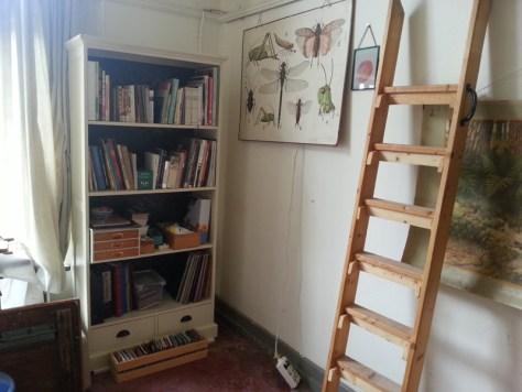 Atelier Boekenkast met veel insectenboeken