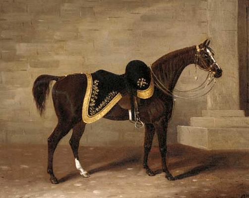 Duke Wellington Horse Copenhagen Hampshire