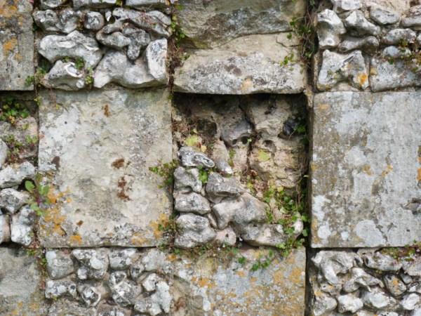 Decaying Flint Stone