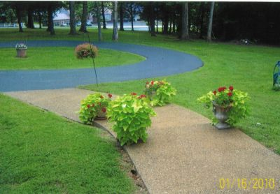 front-yard