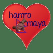 hamromaya Nepal e.V. - gemeinsam Kindern in Nepal helfen