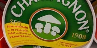 Champignon - Pilze sammeln, Polaroid-Fotos gratis